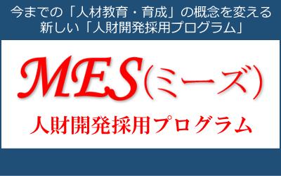 MES(ミーズ)人財開発採用プログラム