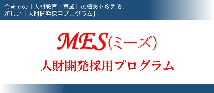 MES(ミーズ) 人財開発採用プログラム
