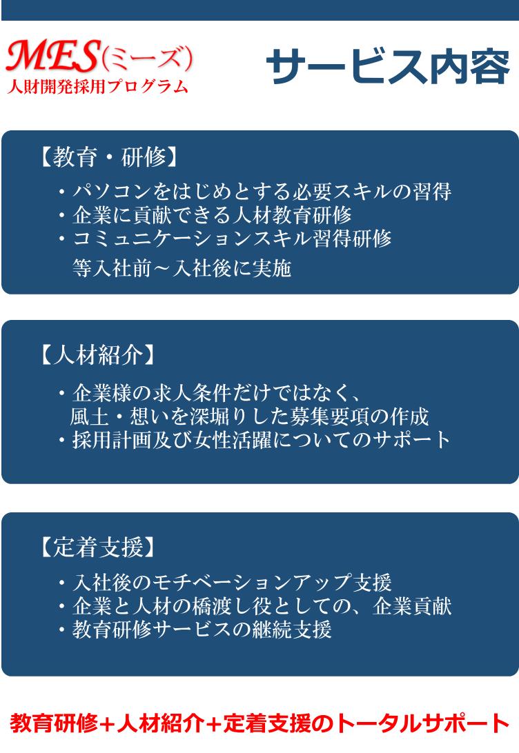 MES(ミーズ) サービス内容